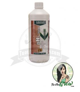 Fertilizante Canna Ph - Crecimiento 1L