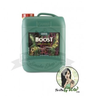 Fertilizante Canna CannaBoost 10L