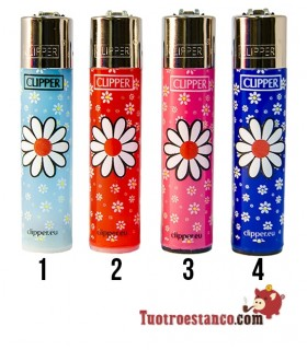 Clipper Daises 6