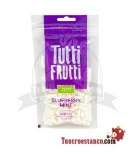 Filters, Tutti frutti, Blueberry, and Mint 6 mm 200 u