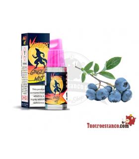 Líquidos Hangsen Vengers 10 ml