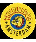 Paper Bulldog Amsterdam