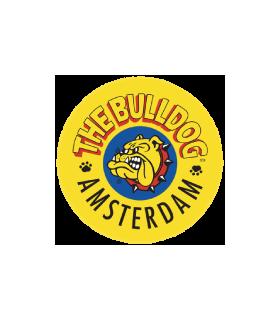 Papel Bulldog Amsterdam